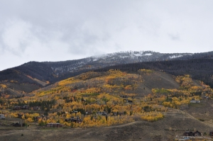 Rocky Mtn Fall